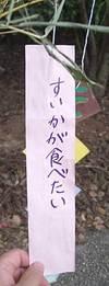 IMGP0692